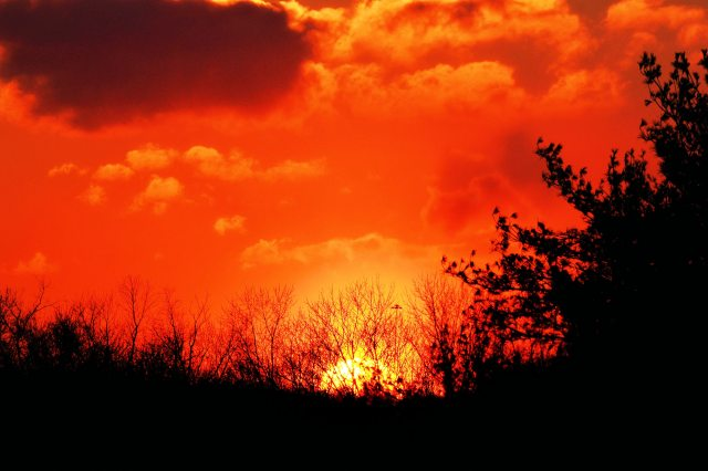Orange Sunset ~ Blemdon in February